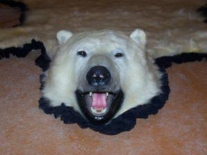 polar-bear-rug-2008